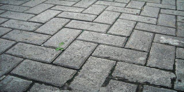 chodníky, stavebniny, dřevo, beton, zámková dlažba