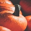 Dýňový dort - báječná podzimní dobrota, plná vitaminů