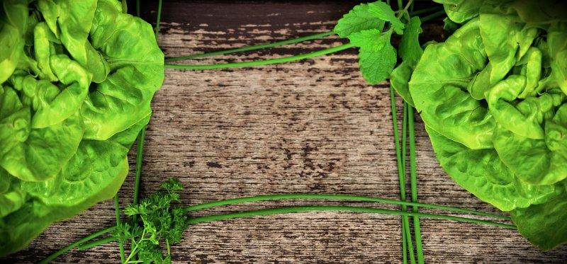zelný salát, vitaminy, vláknina, zdraví, trávení