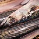 Ryby v jídelníčku zajistí dlouhověkost a pevné zdraví