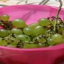 Víno na talíři a v kuchyni