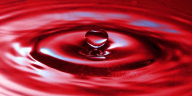 Nemoci srdce úzce souvisí sonemocněním ledvin