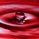 Nemoci srdce úzce souvisí s onemocněním ledvin