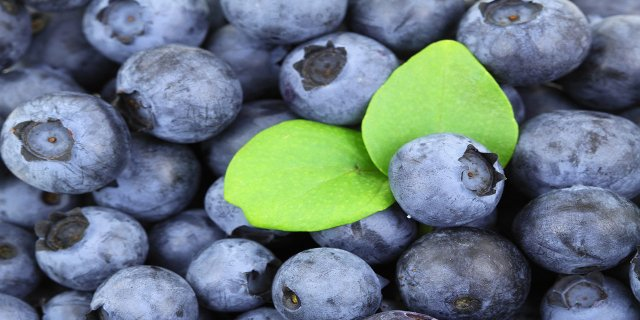 zdraví, rakovina, prevence rakoviny, zdravá strava, ovoce, zelenina