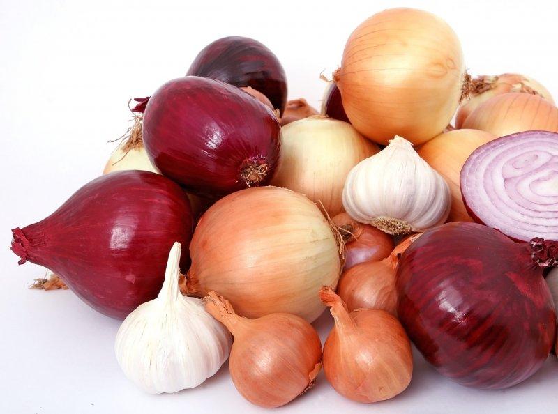 cibule, zdraví, vitaminy, minerály, živit