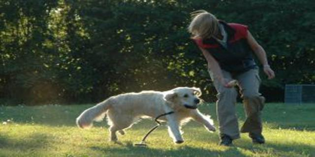 Agility - zdravý pohyb pro psa ipána