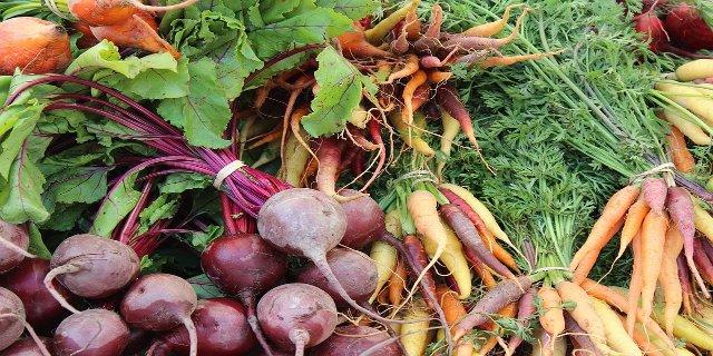 červená řepa, dieta, zdraví, jahody, meloun, hubnutí